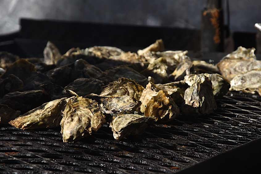 SoHum Beer Fest & BBQ Smoke Off