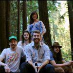Midnight North Redwood Triangle
