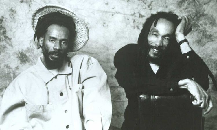 ISRAEL VIBRATION & ROOTS RADICS
