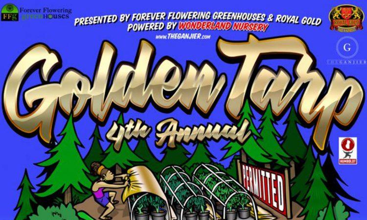 Golden Tarp